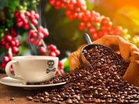 Alltagsdroge Koffein