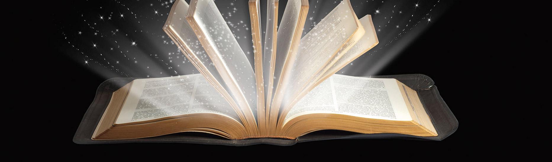 Das erstaunlichste Buch der Welt