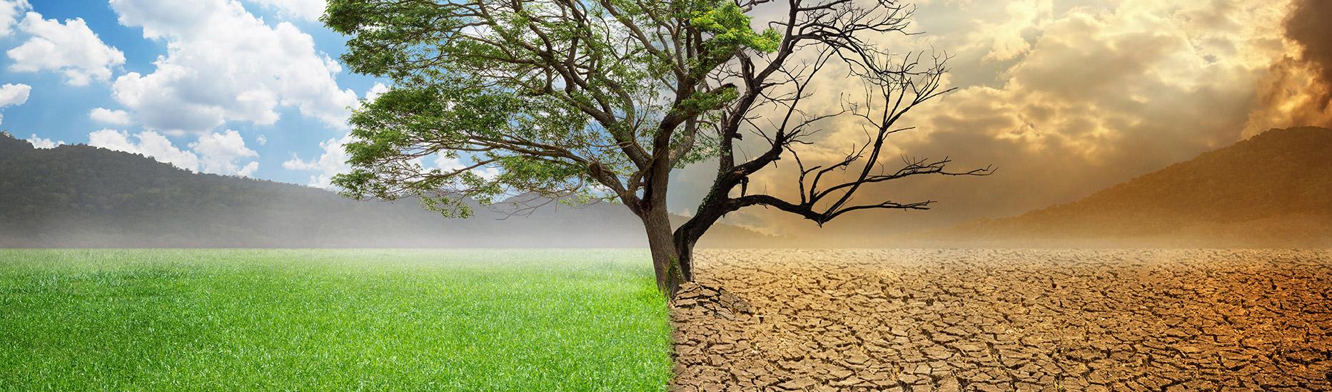 Globale Erwärmung? – Kaum bekannte Fakten zeigen Hintergründe auf