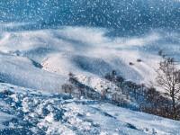 Im tödlichen Schneesturm