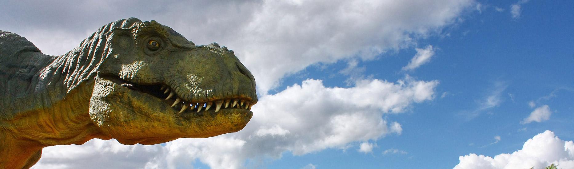 Von Drachen und Dinosauriern